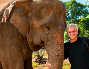 elefant reinhard pic6032