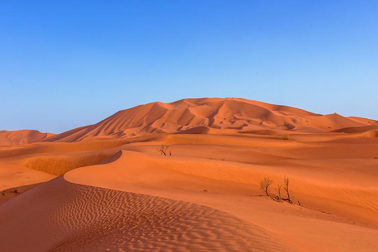 Sanddünen ohne Ende in der Rub al Khali, Oman