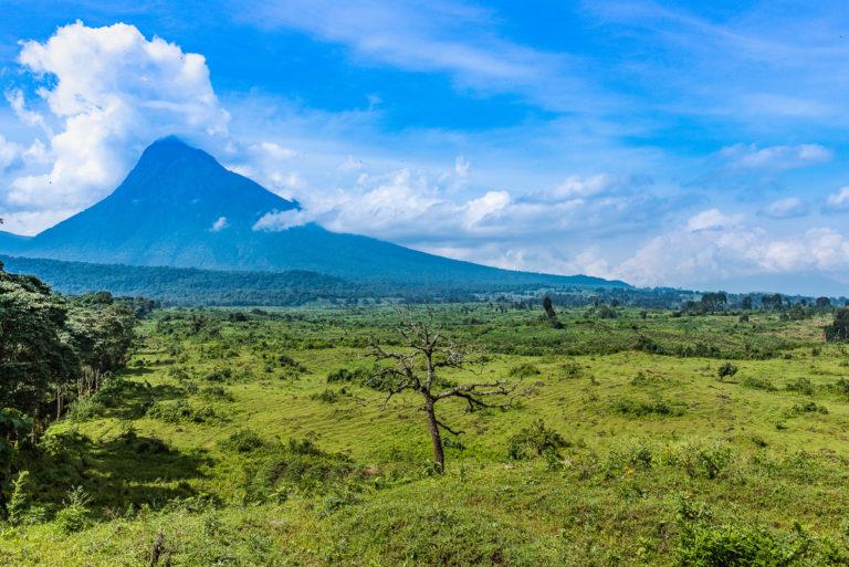 Virunga Vulkane im Kongo