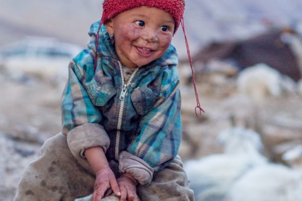 Fotoreise Ladakh, Changpa-Junge