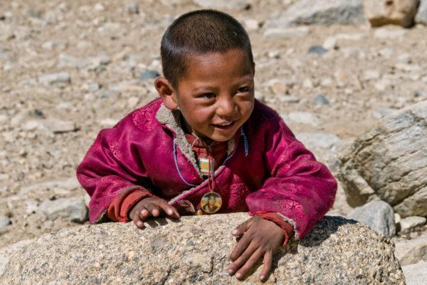 Ladakh, Fotoreise,Changtang-Nomaden