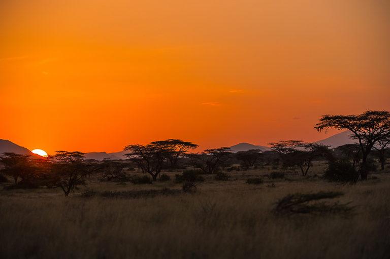 Fotosafari Kenia, Sonnenaufgang