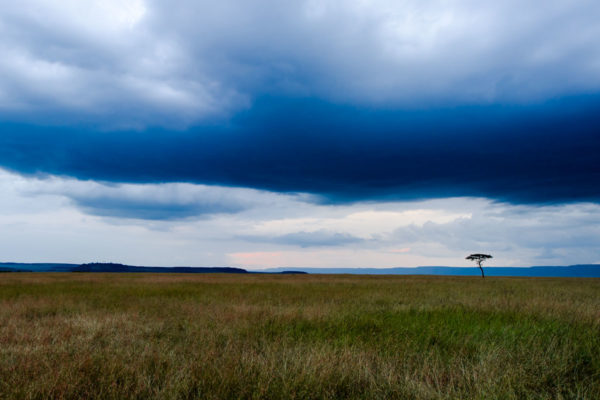 Fotoreise Kenia, Gewitter im Anzug