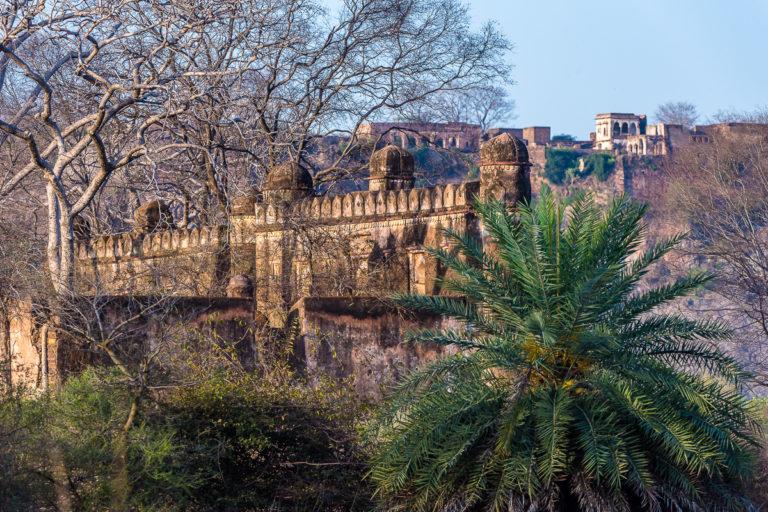 Fotoreise in Indien in Ranthambhore zom Maharadscha