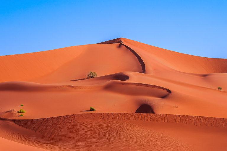 Fantastische Formen im Sand, Wüste im Oman