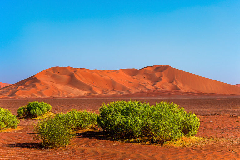 Tief in der Wüste, Rub al Khali
