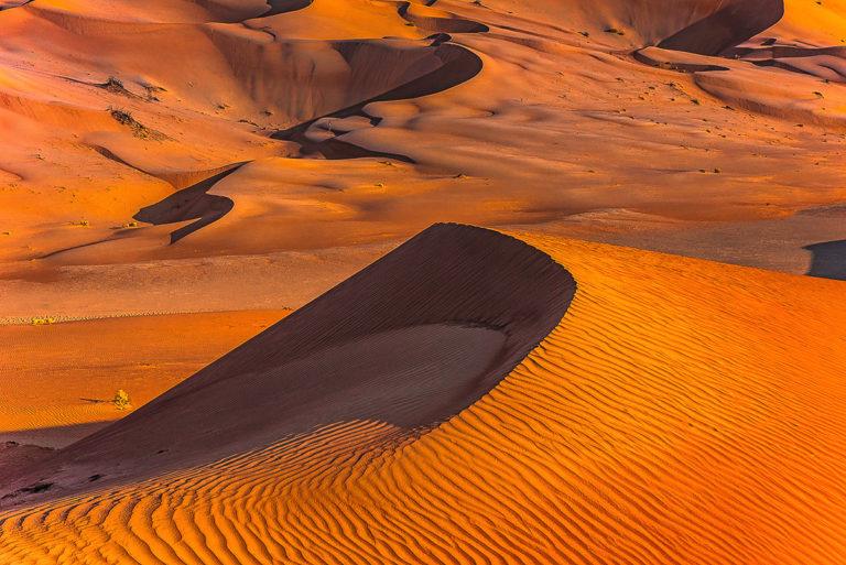 Sicheldüne im Oman, Wüste