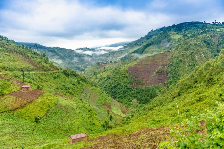 Madagaskar bietet eine unerschöpfliche Fülle an Motiven.
