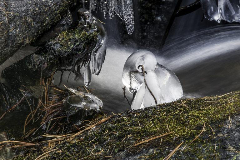 Eisgnom, gefrorenes Männchen