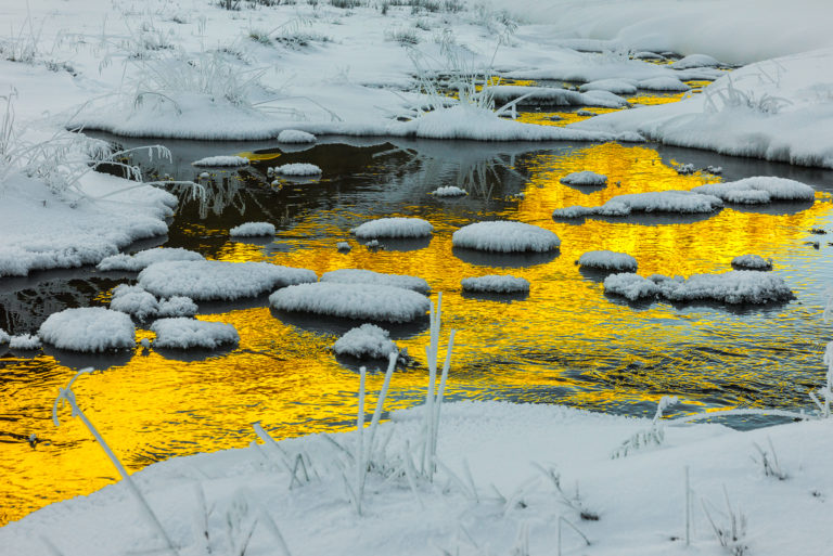 Golden Water am Bernina