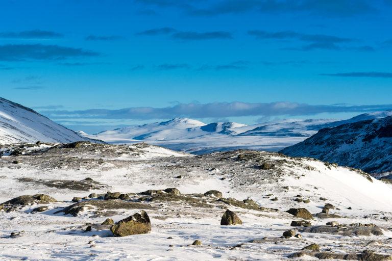 Landschaft im Dovrefjell in Norwegen