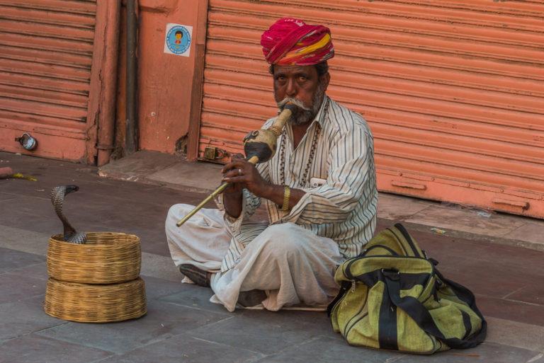 Jaipur, Schlangenbeschwörer