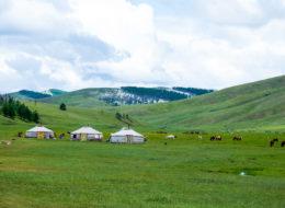 mongolei (6 von 15)
