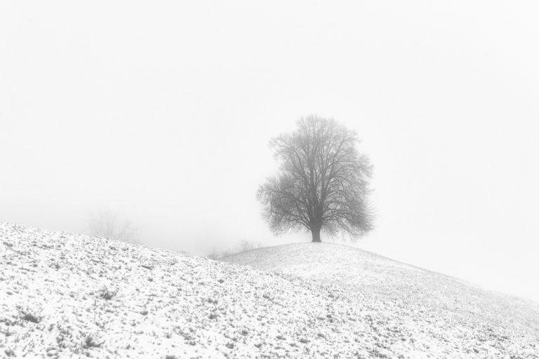 Einsam im Winter auf dem Hirzel