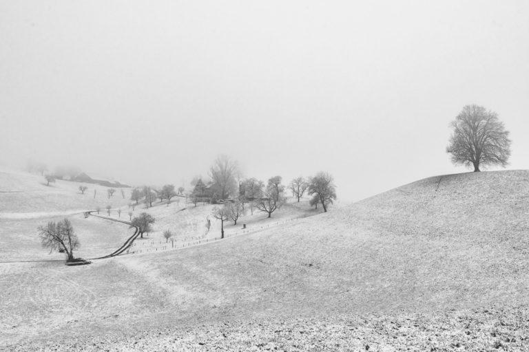 Hirzel, Landschaft im Winter