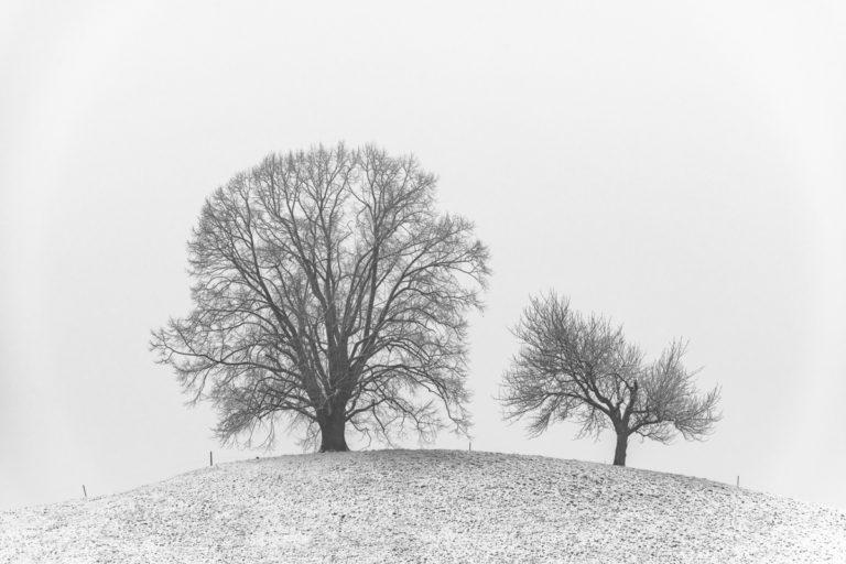 Hirzel, Drumlins im winterkleid