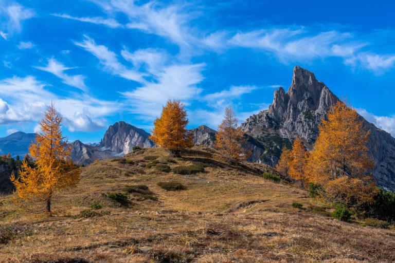Passo Falzarego Italien Dolomiten Herbst Lärchen