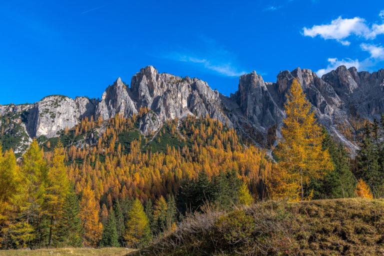 Dolomiten Goldene Lärchen Passo Giau Herbst Italien