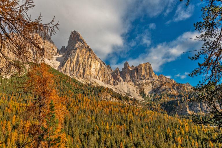Dolomiten, Monte Cristallo, Goldige Lärchenwälder