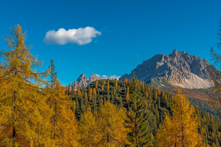 Dolomiten, Weitblick zu den Tre Cime, Goldige Lärchenwälder
