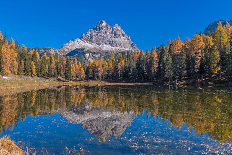 Dolomiten Tre cime di Lavaredo Herbst Goldene Lärchen See Spiegelung